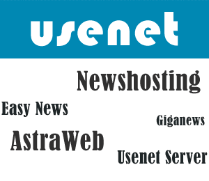 Choosing A Usenet Provider-Who Offers the Best Usenet Bargain
